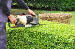 日本らしい庭造りもお任せ!