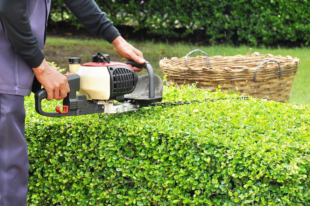 庭園管理って何をするの?